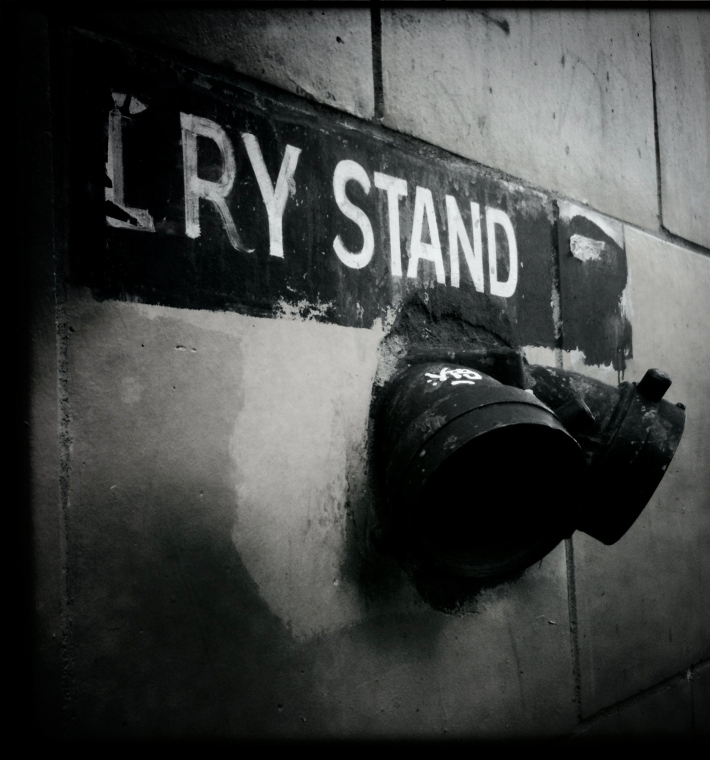 Cry Stand, by Guacira Naves