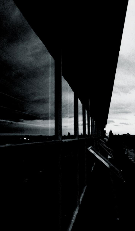 Windows, by Guacira Naves